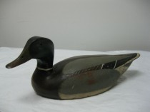 Old Mallard Drake Decoy