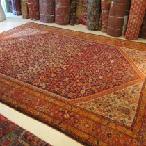 Antique Persian Ferehan  8.10 x 11.10  SOLD
